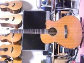 Fender ESA-10CE