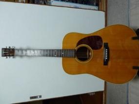 Shenandoah MHD-28